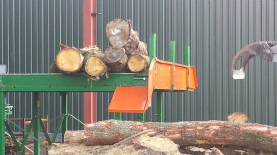 Logs being selected for cutting